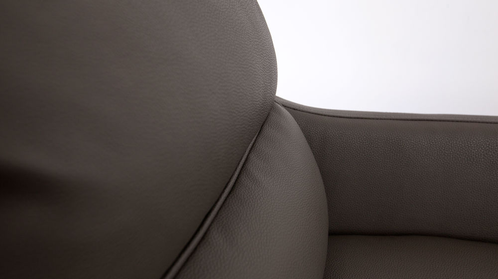 Leather Cushioned Occasional Chair